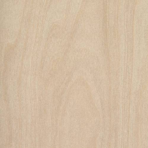 Raw Birch Ply Woodgrain